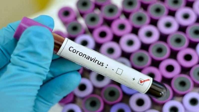 إجراء 50 فحص PCR في بلدة ميمس