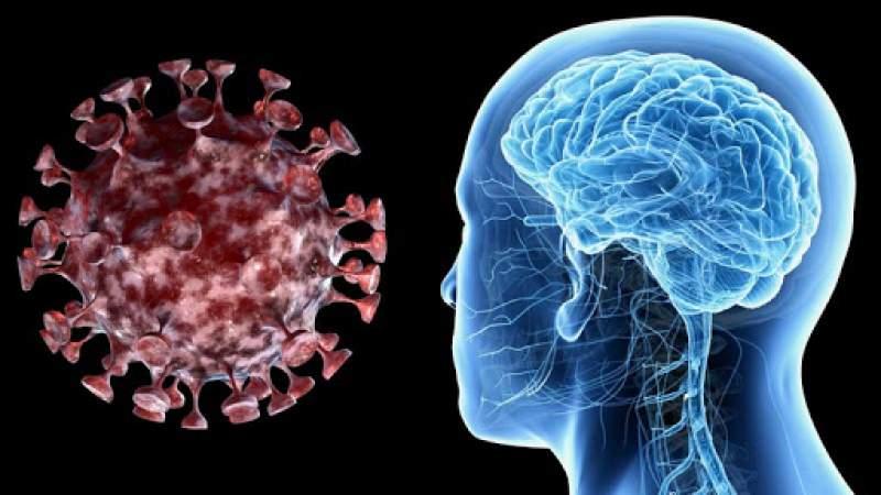 احذروا: كوفيد-19 قد يسبب سكتات دماغية بين الشباب والأصحاء وحتى دون أعراض!