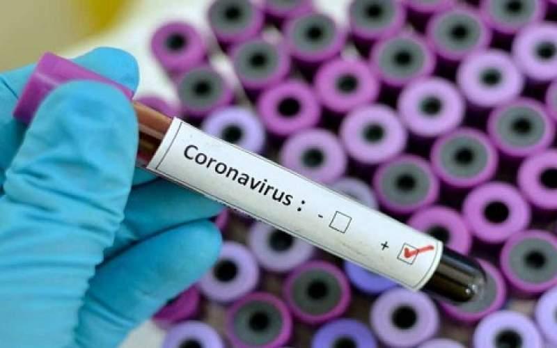 تسجيل 111 إصابة جديدة بفيروس كورونا في قطاع غزة