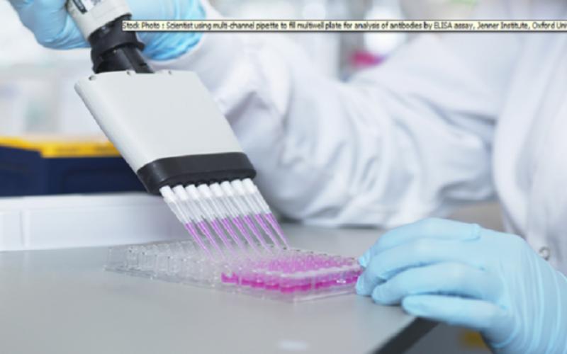 ما الذي يحدد مستوى الأجسام المضادة لدى المتعافين من كورونا؟